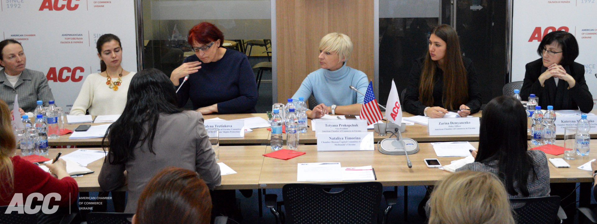 Meeting with Halyna Tretiakova, Head of the Verkhovna Rada of Ukraine Committee on Social Policy and Veterans' Rights Protection