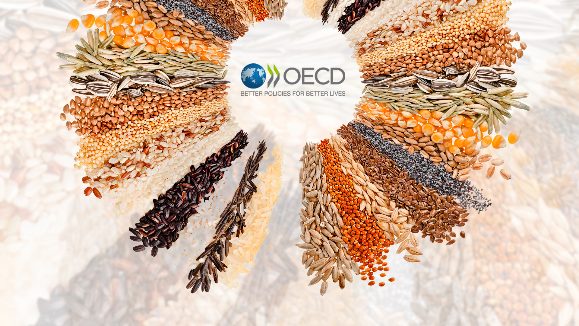 Policy Win: Verkhovna Rada Ratified Ukraine's Accession to the OECD Seed Schemes