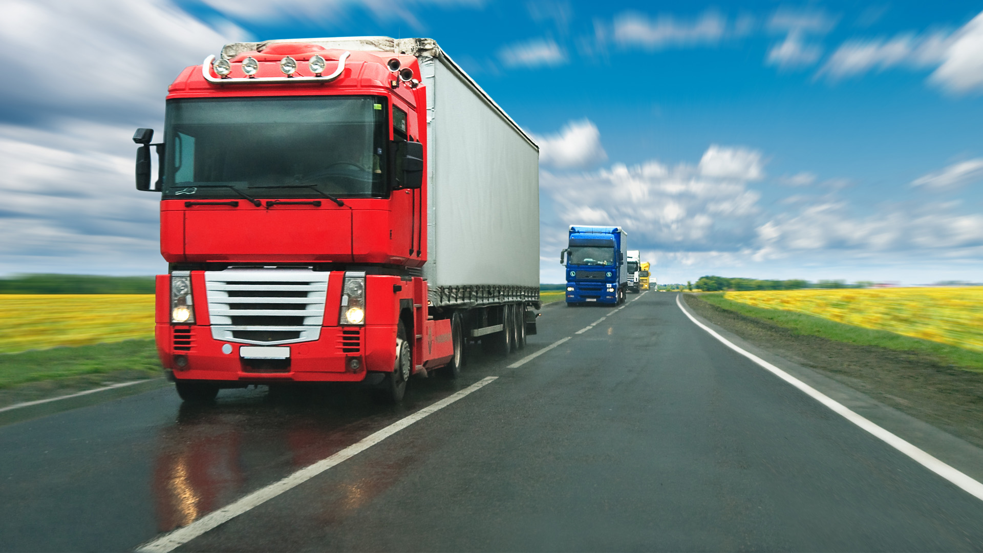 Draft Law Restricting Certain Movement of Freight Transport Was Withdrawn from Parliament's Consideration