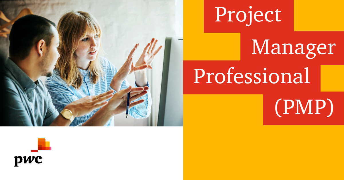 Project Manager Professional  (PMP)®